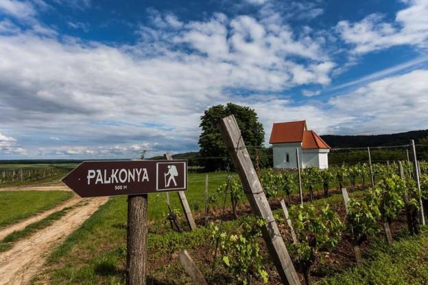 palkonya_tura